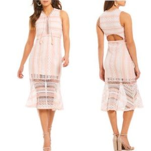 NWT ANTHRO FOXIEDOX Clarinda Pink Lace Dress